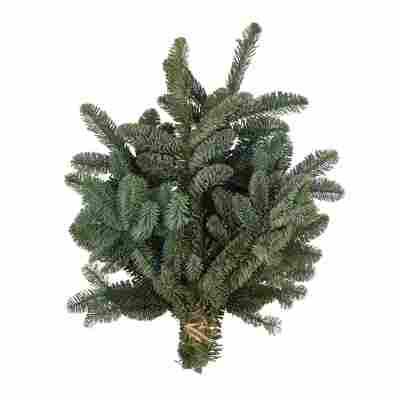 Handbund-Tannengrün Nobilistanne 600 g
