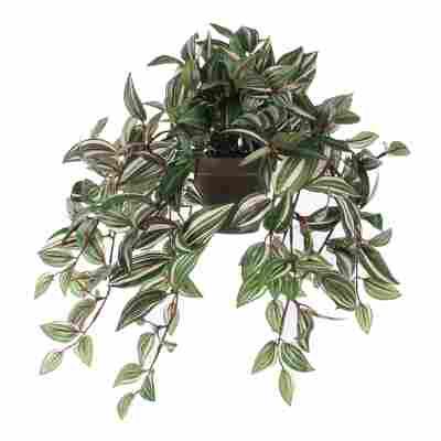 Kunstpflanze Tradescantia hängend 45 cm