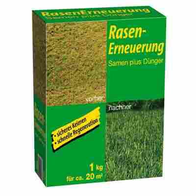 Rasensamen und Dünger 'Rasenerneuerung' 1 kg
