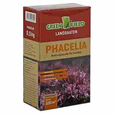 Landsaat Phacelia 0,5 kg