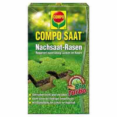 Nachsaat-Rasen 'Compo Saat' 0,5 kg