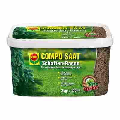 Schattenrasen 'Compo Saat' 2 kg