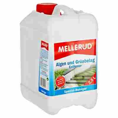 """Entferner für Algen und Grünbelag """"Spezialreiniger"""" 2,5 l"""