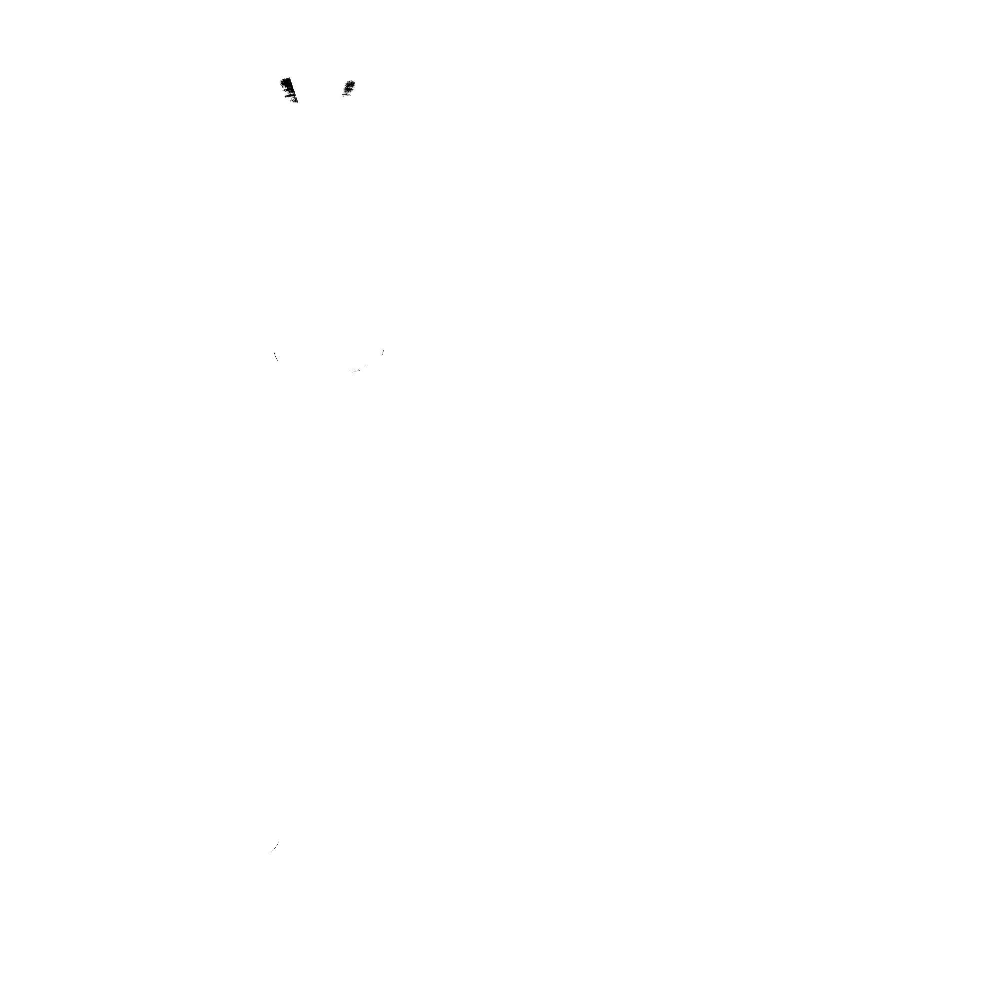 Hauptbild