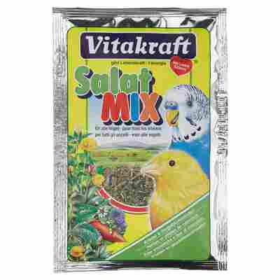 Salatmix 10 g