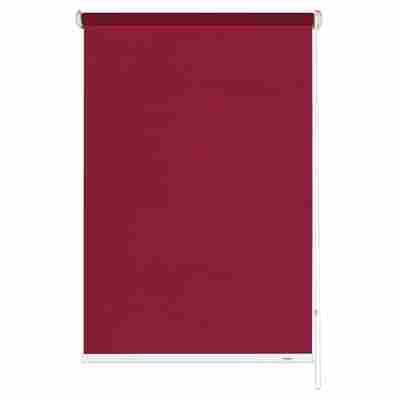 Seitenzug-Rollo 'Abdunklung' bordeaux 122 x 180 cm
