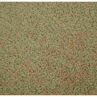 Hochflor-Teppich 'Alpha' Meterware weiß, Breite 5 m