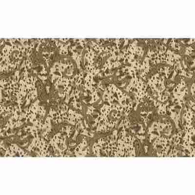 "Vliestapete ""Jungle"" Ornamente braun/creme metallic 10,05 x 1,06 m"