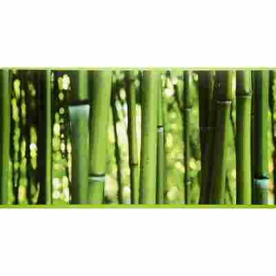 """SK-Borte """"Bambus"""" grün 17,7 cm"""