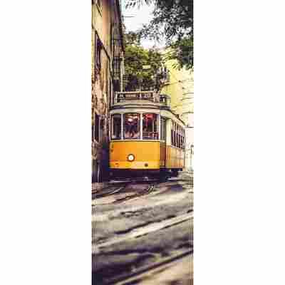 Vlies-Panel 'Lissabon'
