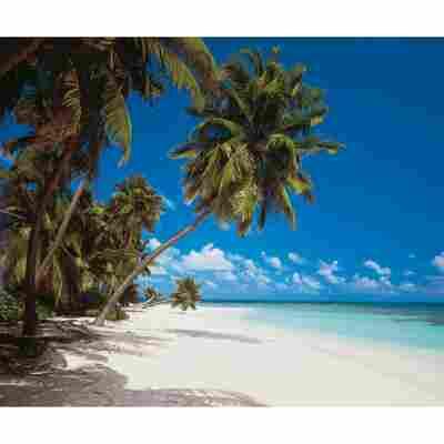 Vlies-Panel 'Maledives'