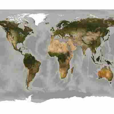 Vlies-Panel 'World Map'