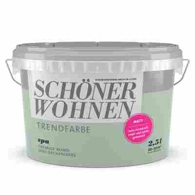 Wand- und Deckenfarbe Trendfarbe 'Spa' graugrün matt 2,5 l