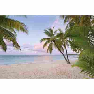 Vliesfototapete 'Paradise Morning' 368 x 248 cm