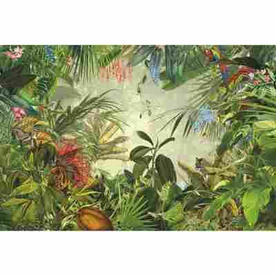 Vliesfototapete 'Into The Wild' 368 x 248 cm