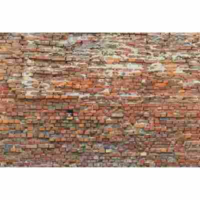 Vliesfototapete 'Bricklane' 368 x 248 cm