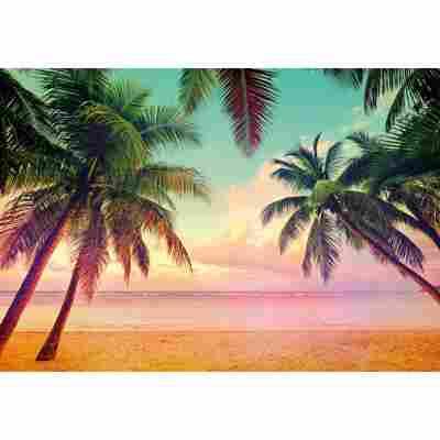 Komar Fototapete 'Miami' 368 x 254 cm