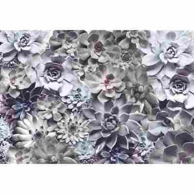 Fototapete 'Shades' 368 x 254 cm