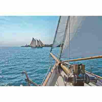 Komar Fototapete 'Sailing' 368 x 254 cm
