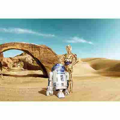 Fototapete 'Star Wars Lost Droids' 368 x 254 cm