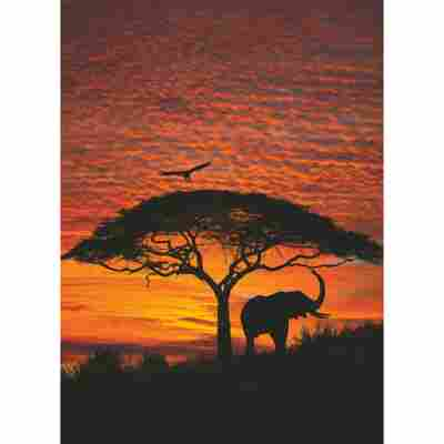Fototapete 'African Sunset' 194 x 270 cm