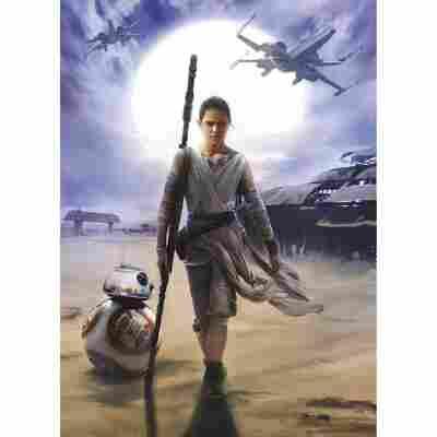 Fototapete 'Star Wars Rey' 184 x 254 cm