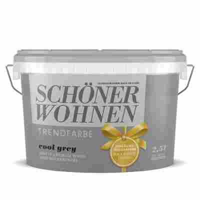 Wand- und Deckenfarbe Trendfarbe 'Cool Grey' matt 2,5 l
