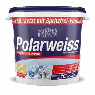 Wand- und Deckenfarbe Polarweiß, matt, 25 l
