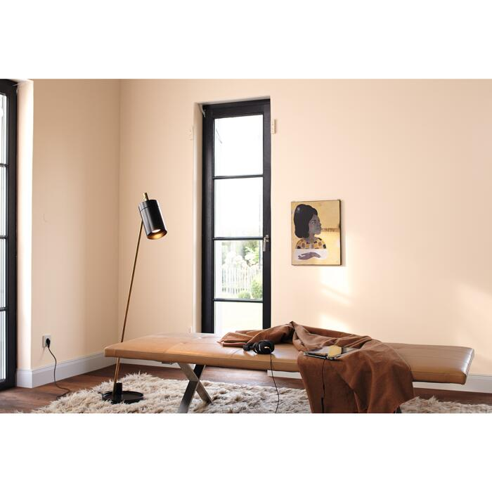 Alpina Wandfarbe Feine Farben No 28 Vers In Pastell Apricot 2 5 L ǀ Toom Baumarkt