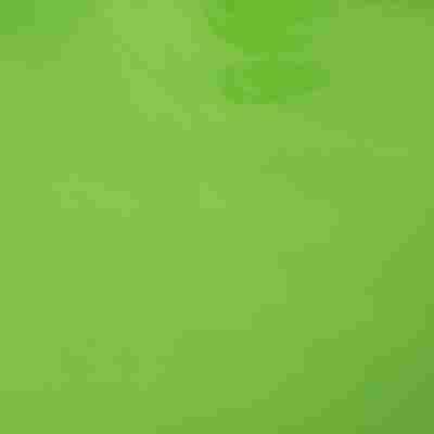 Klebefolie apfelgrün lackglänzend 200 x 45 cm