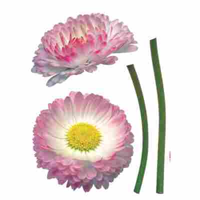 Komar Walltattoo 'Daisy' 50 x 70 cm