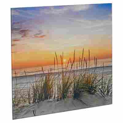 """Glasbild """"Lonely Dune"""" 30 x 30 x 1,3 cm"""