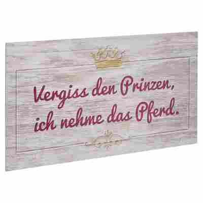 """Decopanel """"Vergiss den Prinzen"""" 27 x 15 cm"""