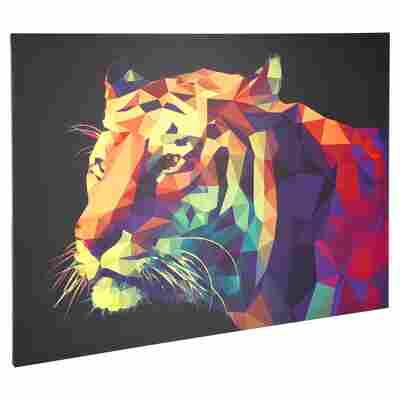 """Leinwandbild Canvas """"Tiger"""" 120 x 90 cm"""