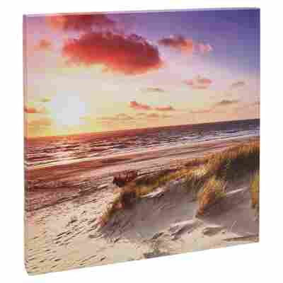 """Leinwandbild Canvas """"Sea Harmony"""" 27 x 27 cm"""
