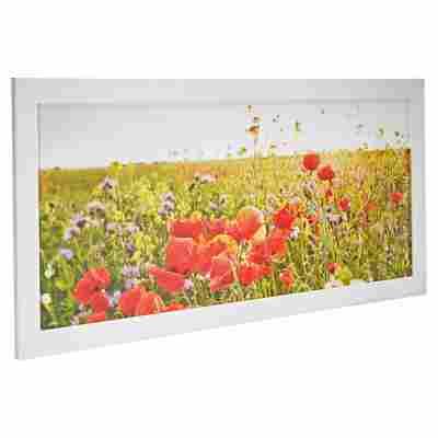 """Rahmenbild Framed """"Blumenwiese"""" 130 x 60 cm"""