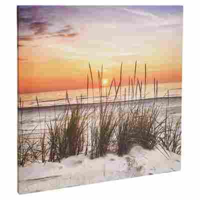 "Leinwandbild Canvas ""Sonnenuntergang"" 50 x 50 cm"