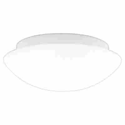Lampen Leuchten Online Bestellen Toom Baumarkt