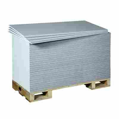 Rigips 1-Mann-Platte Compact 2000 x 600 x 12,5 mm