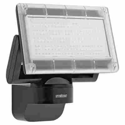 LED-Strahler Schwarz 'Home 1'