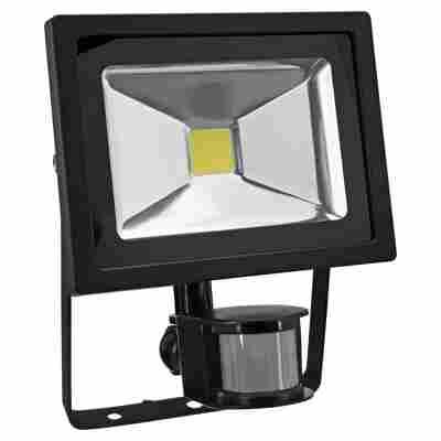 LED-Wandfluter 20 W
