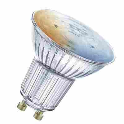 LED-RGB-Reflektorlampe 'Smart+' 5,5 cm 350 lm 5 W GU10 transparent WLAN Tunable White