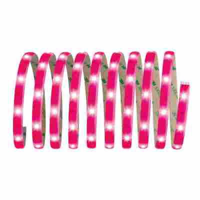 LED-Streifen-Set 'YourLED' neonpink 3 m