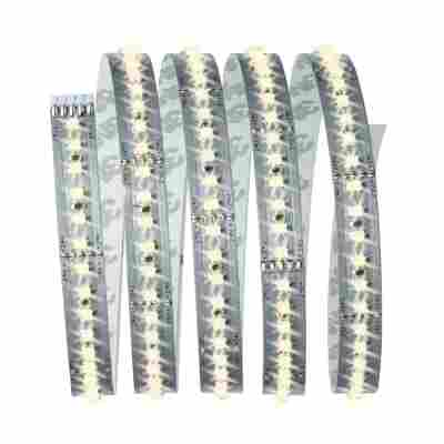 Function MaxLED 1000 Basisset 1,5 m Warmweiß 20 W 230/24 V 60 VA Silber