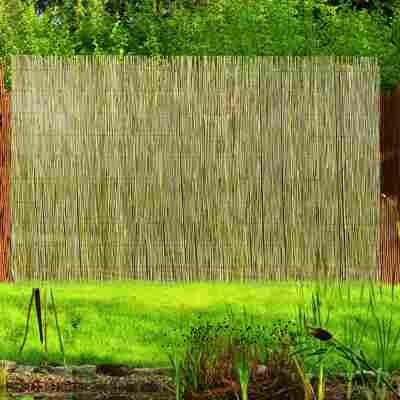 Schilfrohrmatte Föhr 1 x 3 m