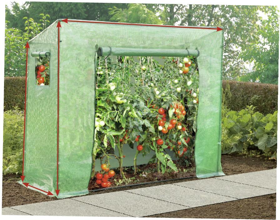 Tomatengewachshaus 100 X 60 169 148 Cm Toom Baumarkt