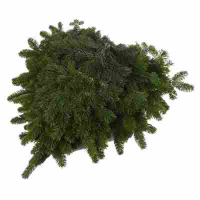 Handbund-Tannengrün Nordmanntanne 5 kg