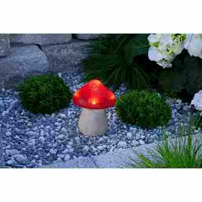LED-Solarleuchte 'Pilz' mehrfarbig